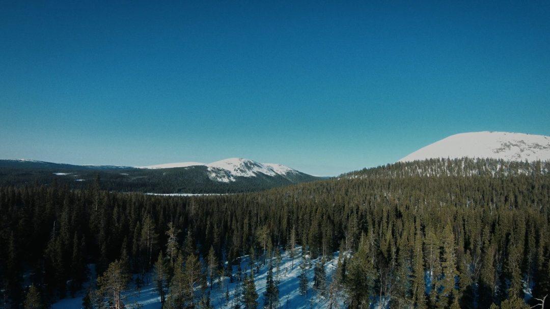 Valve Motion Vaasan Sähkö Vuoristo Metsä Still
