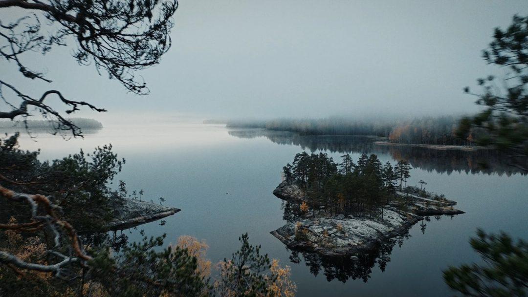 Valve Motion Vaasan Sähkö Järvi Metsä Still
